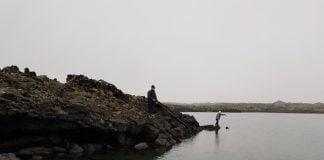 Hraunsfjörður, sjóbleikja