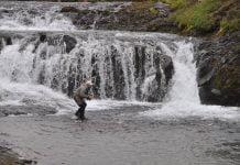 Bakkaá, Fishpartner