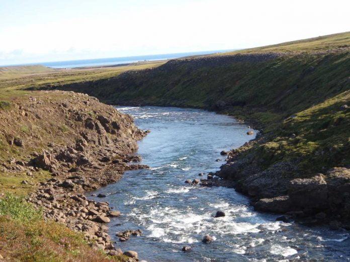 Miðfjarðará í Bakkafirði.