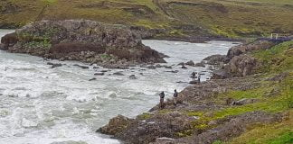 Þjórsá, Urriðafoss