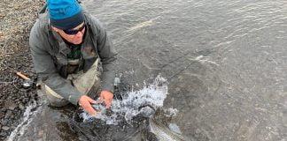 Ölfusvatnsárvík